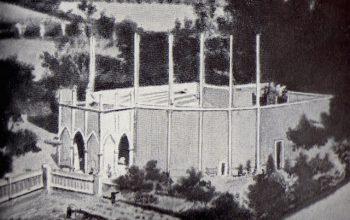 arena ve pstrosce