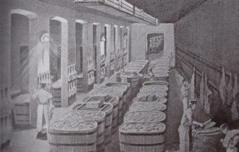 prvni prazska tovarna na sunky a uzenarske zbozi-antonin chmel 02